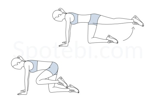 donkey-kicks-exercise-illustration